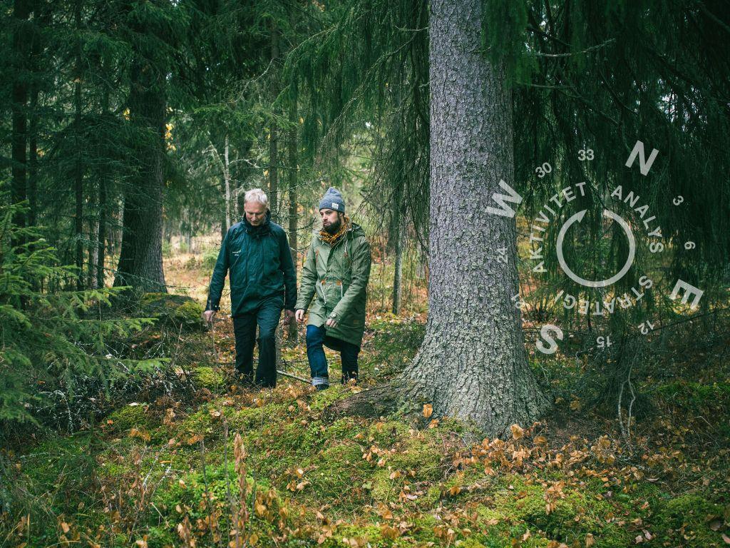 Ta ut riktningen i ditt skogsägande